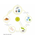EuBP life cycle model