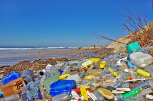 Polluted beach in France (Fotolia/sablin)