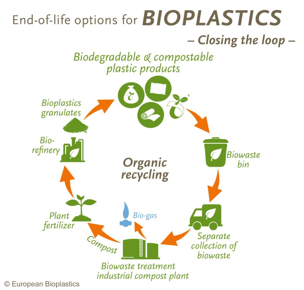 Composting European Bioplastics E V