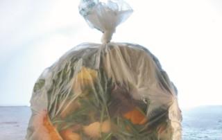 biowaste bag