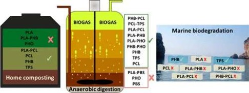 Study aims to understand the biodegradation of individual polymers and their blends in managed and unmanaged environments