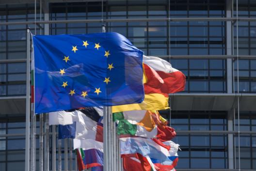 "Europe's new ""Circular Economy Action Plan"" needs to link bioeconomy and circular economy"